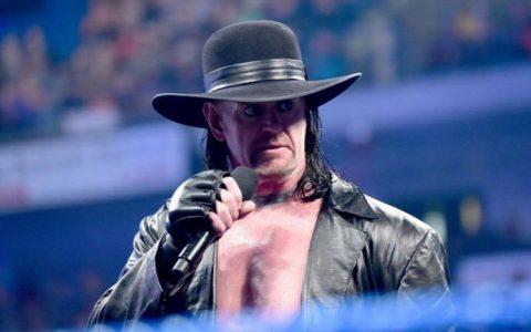 WWE摔跤狂热大赛2015 死亡谷主人送葬者遇上恐惧代言人布雷怀特
