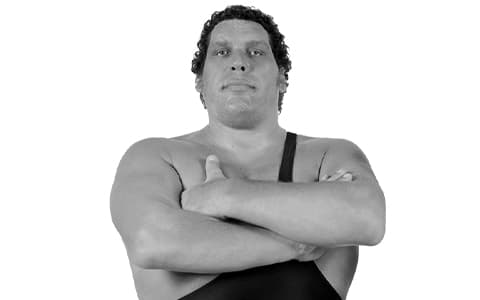 巨人安德雷(Andre the Giant)