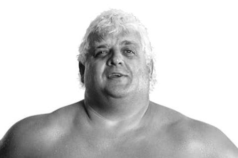 杜斯提罗兹(Dusty Rhodes)