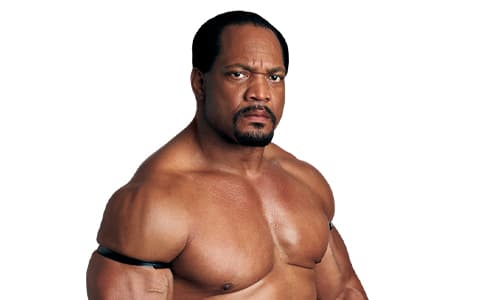 罗恩·西蒙斯(Ron Simmons)