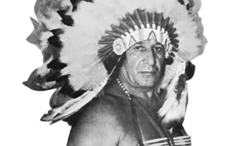 首领杰斯乔恩堡(Chief Jay Strongbow)