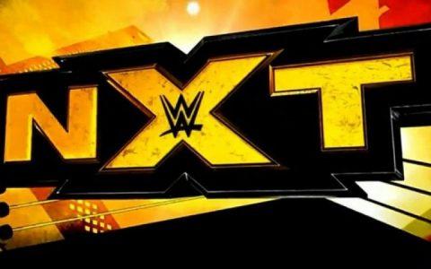 反向召回风潮更多的主阵明星选择回到NXT
