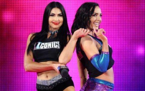 标志双子回归WWE