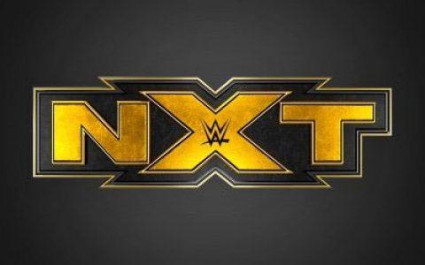 预测一下WWE红蓝品牌被闲置的明星哪些会转会黄色品牌?