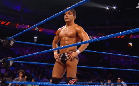 WWE5位即将冉冉升起的新星有你喜欢的吗?