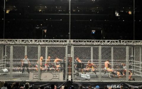 WWE地狱牢笼大赛2014