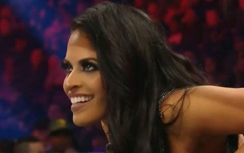 泽琳娜·维嘉的单打之旅不过是WWE高层的一个儿戏!