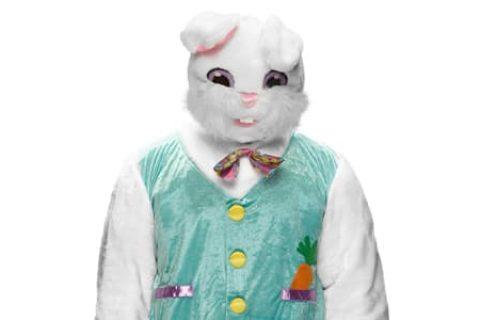 兔子(The Bunny)