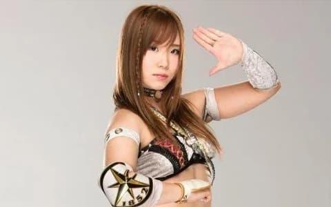 因祸得福!宝城海里因伤暂退,成为WWE驻日本的宣传大使!