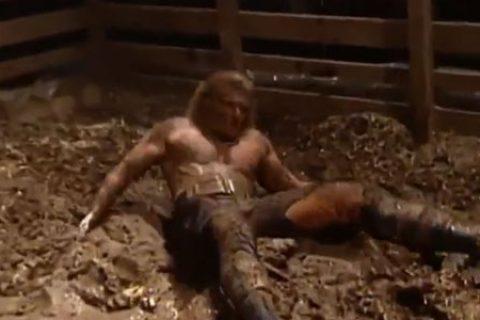 Triple H最想合作的选手!其中一位两人在猪圈交手16次