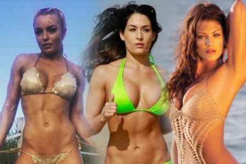 10张最热门的WWE Diva比基尼泳装照片2